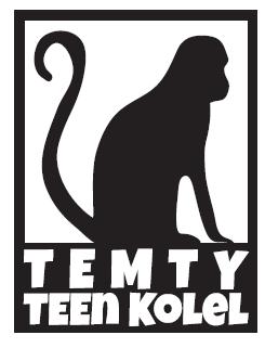 TEMTY LOGO_Box